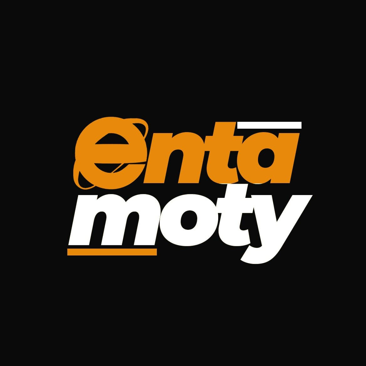 Entamoty - Ghana's Leading Digital Marketing and Content Creating Agency